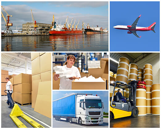 Collage logistics and freight forwarding - Independent Freight